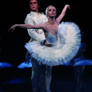 Balet Labutí jezero Národní divadlo
